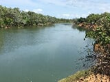 Photo Scarce and sought after high and dry daly river...